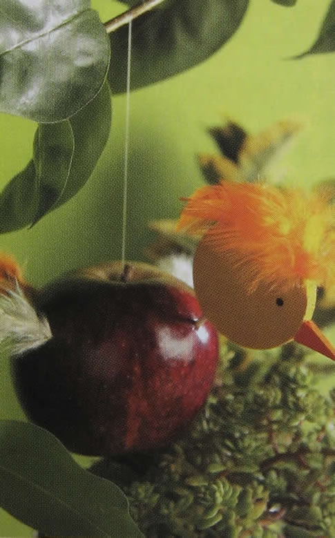 Idea para que las aves visiten tu jardin