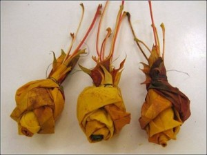 Ramo de rosas realizadas con hojas secas-12