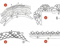 imagen Puntillas a crochet para decorar tus creaciones