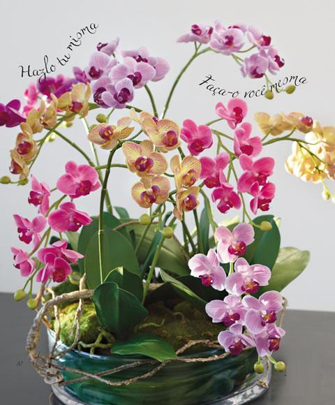 Original centro de mesa con orqu deas gu a de manualidades - Centros de plantas naturales ...