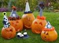 imagen Feliz Halloween-Cumpleaños