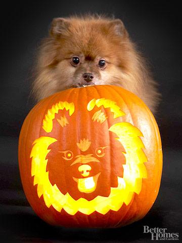 Tallando A Tu Perro En Una Calabaza Para Halloween Gu 237 A