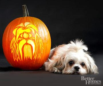 Tallando A Tu Perro En Una Calabaza Para Halloween Gua