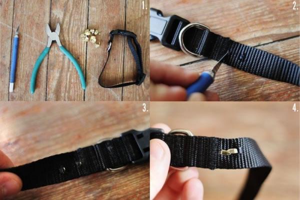 collar fácil para perro 2