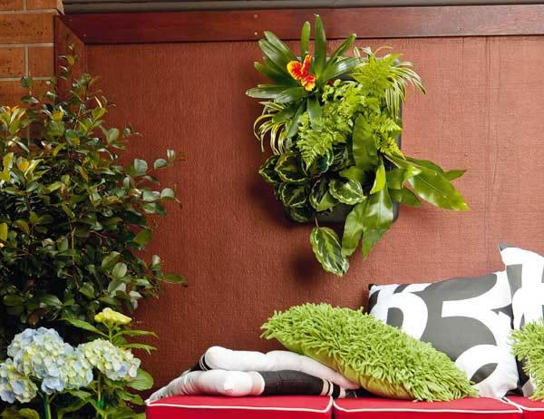 Peque o jard n vertical gu a de manualidades for Como disenar un jardin pequeno fotos