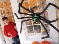 imagen Araña gigante para hacer con los peques