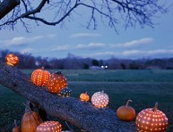 imagen Calabazas rellenas de estrellas para Halloween