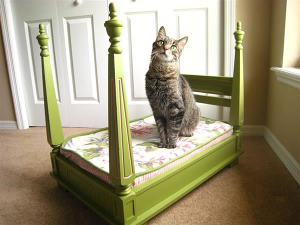 C mo hacer una cama para tu mascota gu a de manualidades - Hacer cama plegable pared ...