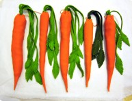 imagen Lindas y ricas zanahorias con dulces