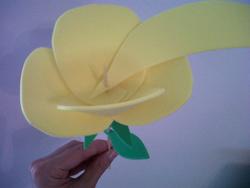 Rosas de goma eva10