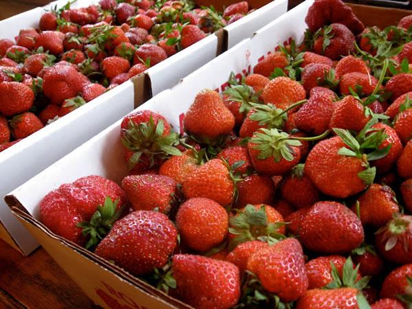 Idea para limpiar fresas