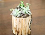 imagen Pequeñas macetas de troncos