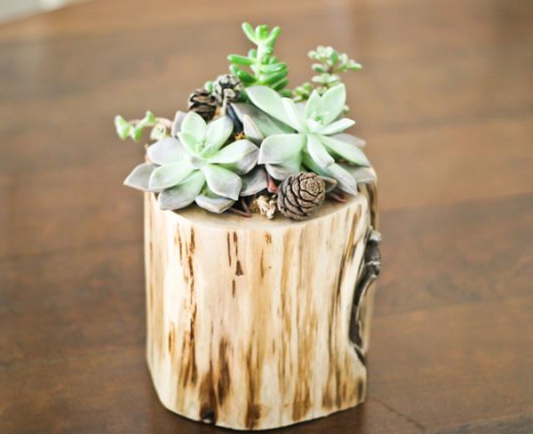 jardineras con troncos