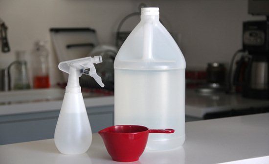 Limpia la casa naturalmente 5