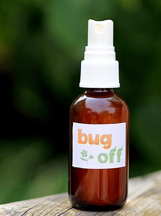 imagen Cómo hacer repelente natural de insectos