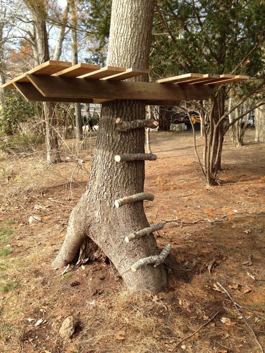 Из ствола дерева своими руками