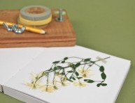 imagen Aprende a hacer una prensa para flores secas