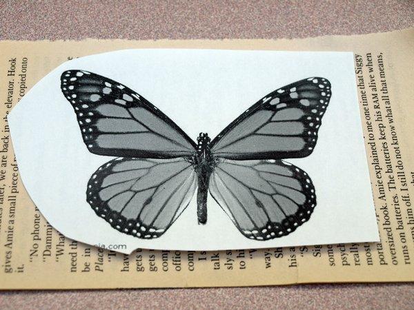 Mariposa de papel 4