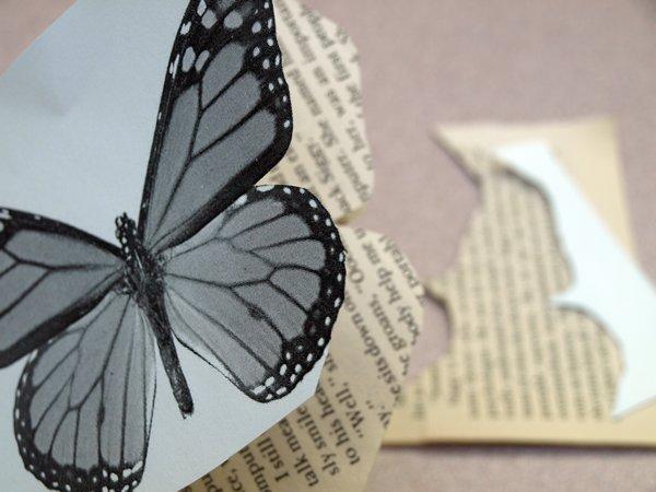 Mariposa de papel 5