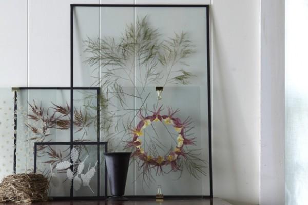 flores y plantas prensadas