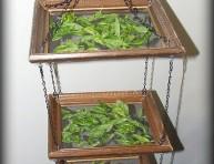 imagen Secadero para hierbas aromáticas