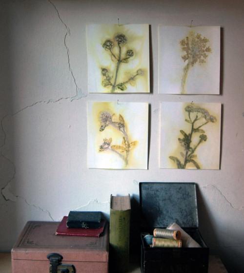 Ecoimpresiones florales 1