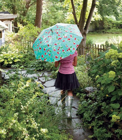 Paraguas renovado 1