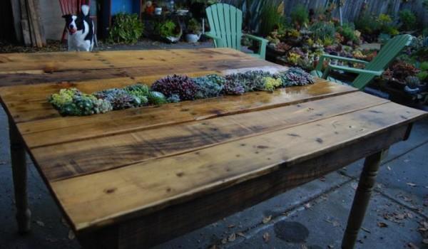 Mesa con suculentas realizada con un palet 6