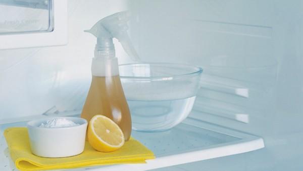 27-limpieza-y-desodorización-del-frigorifico-01-e1367602506833