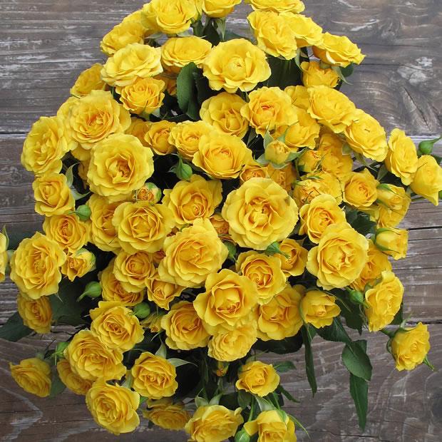Hacer que las flores duren más