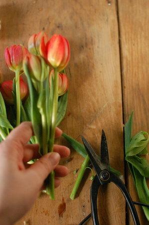 Bouquet de flores 3