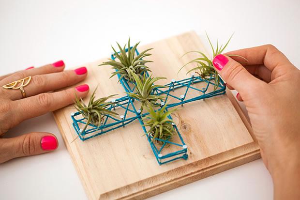 Cuadros con plantas 7