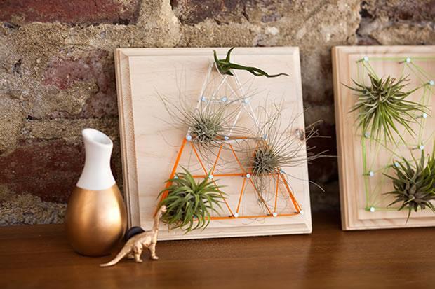 Cuadros con plantas 8