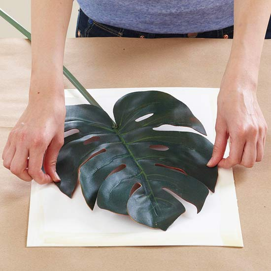 Arte botánico DIY 3