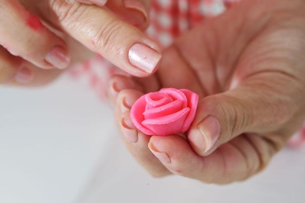 Rosa porcelana fría 1