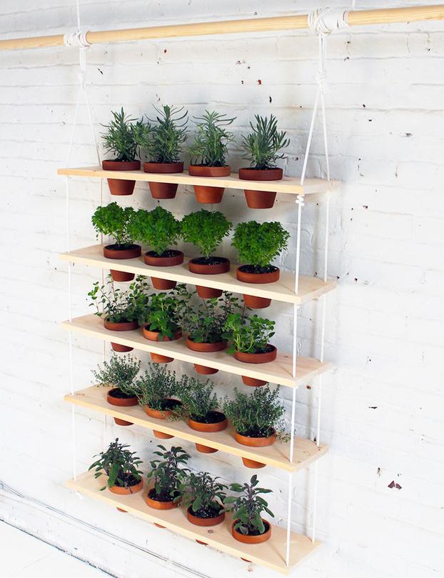 Jardín vertical de interior DIY 1