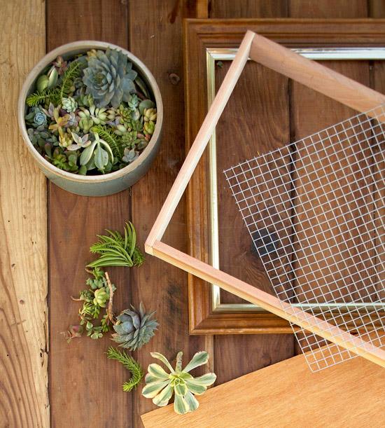 hacer-un-artistico-jardin-vertical-de-suculentas-03