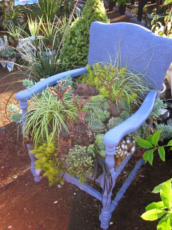 ideas-para-decorar-con-sillas-y-plantas-04