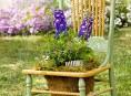 imagen Ideas para reciclar y decorar con sillas y plantas