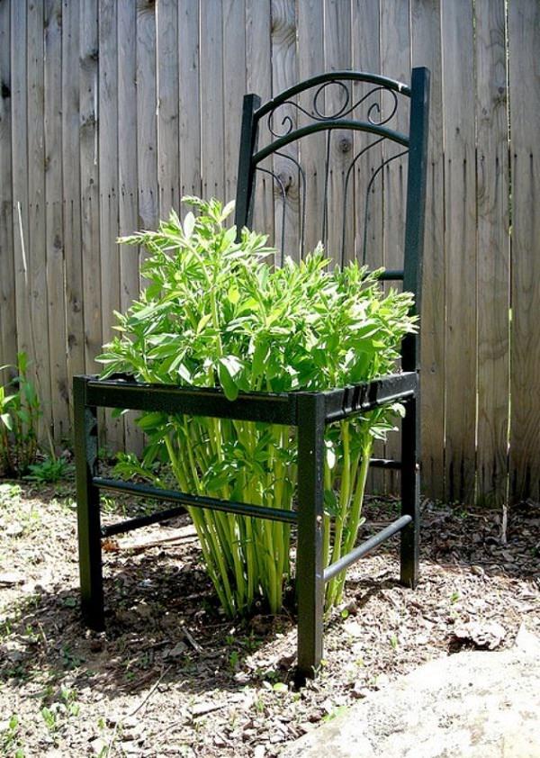 ideas-para-decorar-con-sillas-y-plantas-14