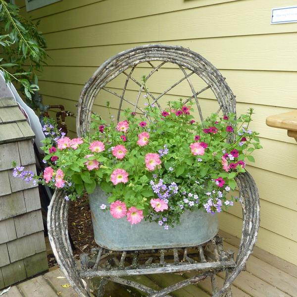 ideas-para-decorar-con-sillas-y-plantas-19