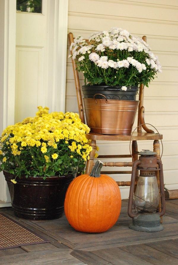 ideas-para-decorar-con-sillas-y-plantas-20