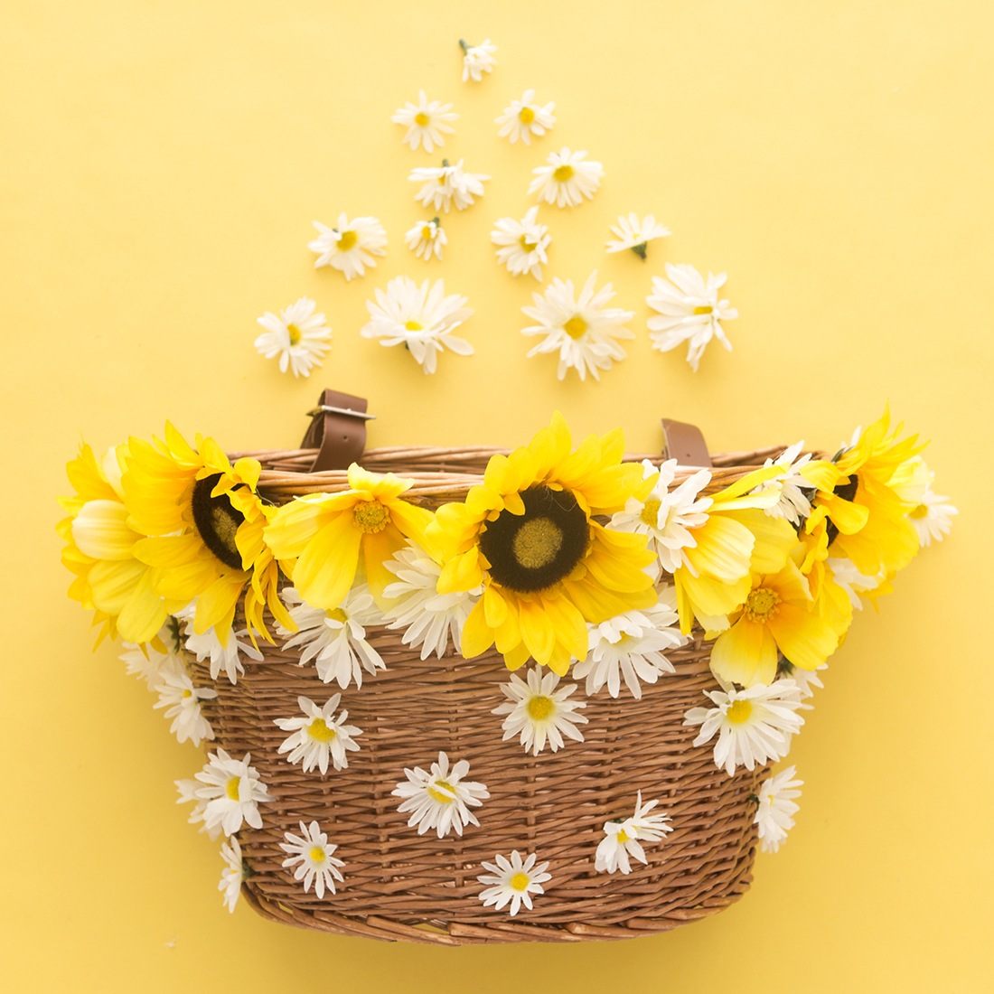 decora-una-cesta-con-flores-para-tu-bicicleta-05