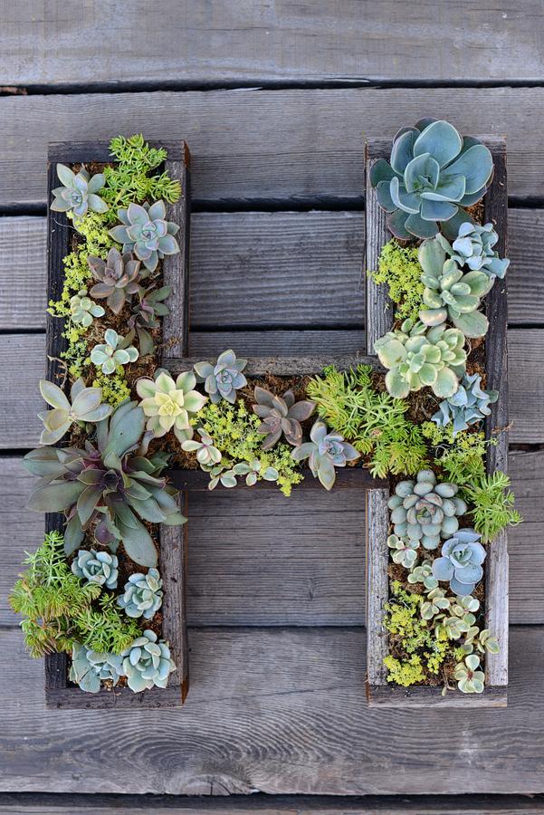 9 ideas para hacer tu propio jard n vertical gu a de - Construir jardin vertical ...
