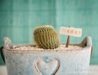 imagen Mini cartelitos DIY para jardines de fantasía